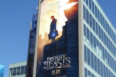 Fantastic beasts where to find billboard003