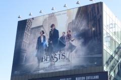Fantastic beasts where to find billboard009