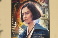 Fantastic beasts where to find billboard010