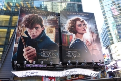 Fantastic beasts where to find billboard019