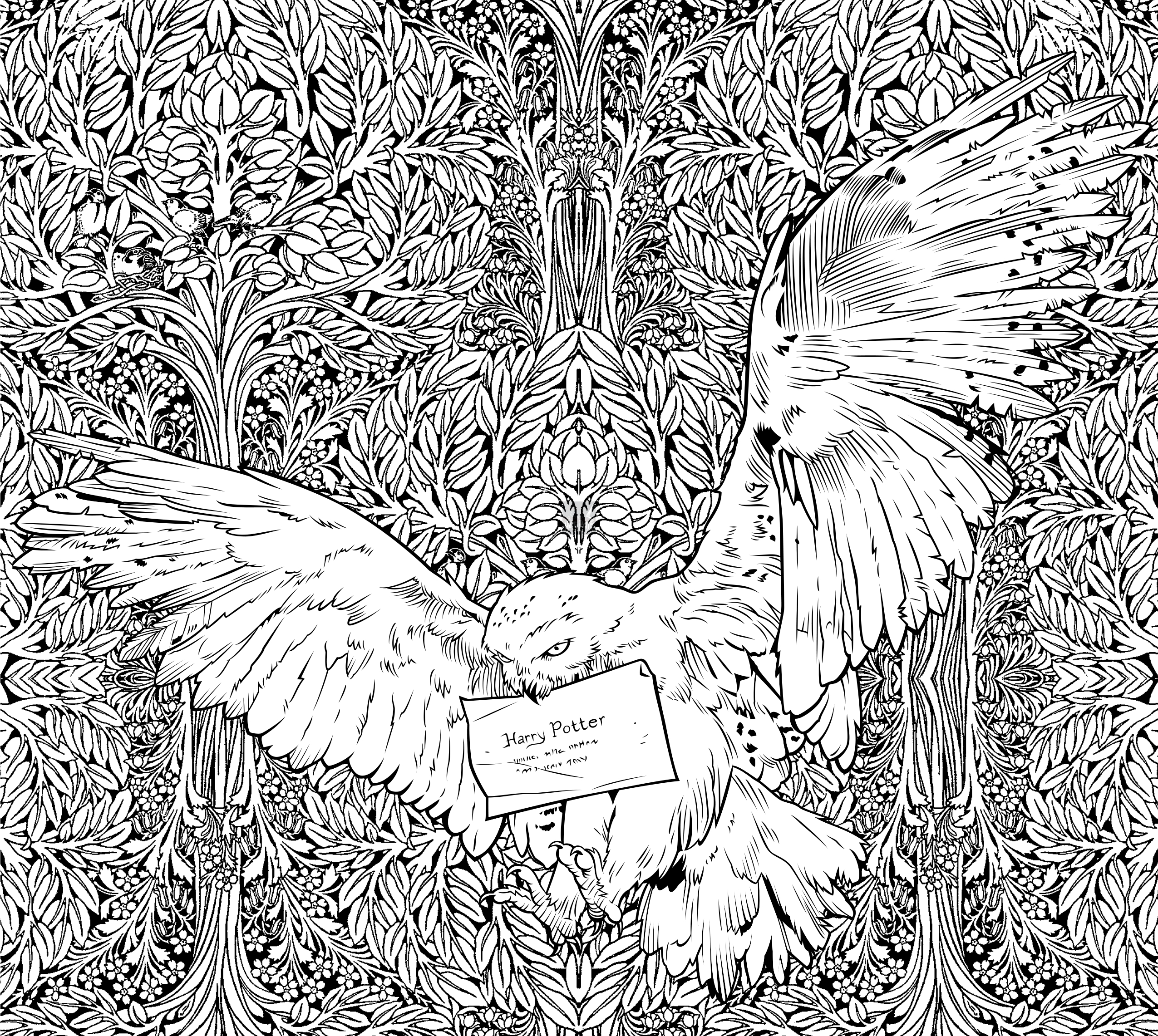 Livre de coloriage harry potter le miroir du ris d le for Miroir coloriage