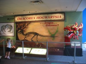 tmp_10262-normal_uhpdracorex009-781088483