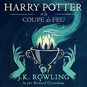 Jim kay archives univers harry - Harry potter et la coupe de feu livre en ligne ...
