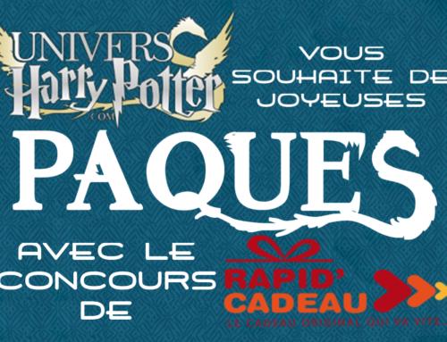 Concours pascal : Gagnez des produits Harry Potter en partenariat avec Rapid'Cadeau !