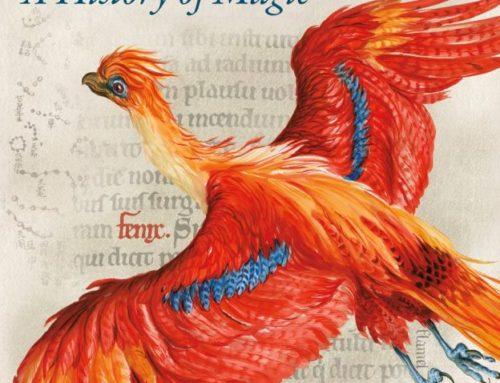 Gallimard proposera également le guide pour adultes de l'exposition 'Harry Potter : Une Histoire de la Magie' !