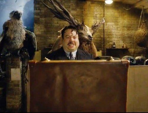 """Divulgâchis – """"Les Crimes de Grindelwald"""" : les créatures que vous verrez dans ce second volet !"""