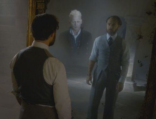 """Les Crimes de Grindelwald"" : Dumbledore sera ""clairement"" gay !"