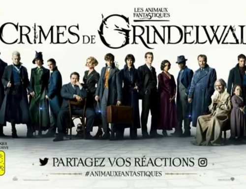 "[SANS SPOILER] ""Les Crimes de Grindelwald"" : on a vu le film, on vous dit ce que l'on en pense !"