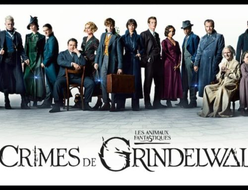 """""""Les Crimes de Grindelwald"""" : la date de sortie des DVD et Blu-ray du film en France !"""
